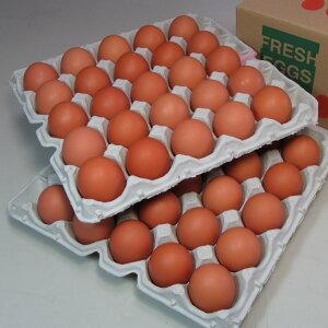 花たまご (50個) 一部地域を除き【送料無料】 卵 玉子 タマゴ たまご 鶏卵 赤殻 赤がら 新鮮 産みたて 産直 産地直送 Non-GMO ノンGMO ポストハーベストフリー PHF こだわりの飼料 安心 安全 卵