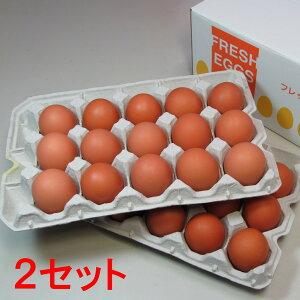 花たまご (30個)×2セット 一部地域を除き【送料無料】 卵 玉子 タマゴ たまご 鶏卵 赤殻 赤がら 新鮮 産みたて 産直 産地直送 Non-GMO ノンGMO ポストハーベストフリー PHF こだわりの飼料 安心