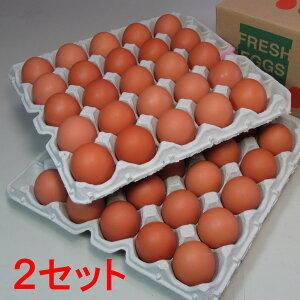 花たまご (50個)×2セット 一部地域を除き【送料無料】 卵 玉子 タマゴ たまご 鶏卵 赤殻 赤がら 新鮮 産みたて 産直 産地直送 Non-GMO ノンGMO ポストハーベストフリー PHF こだわりの飼料 安心
