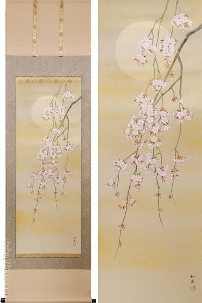 掛け軸 枝垂れ桜 (三宅和光) (掛軸小物なし) 送料無料 【掛軸】