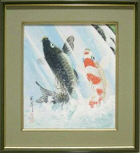 絵画(色紙額) 夫婦滝昇り鯉 (松橋玉昇) 送料無料 【肉筆】【日本画】【鯉】【変型特寸】