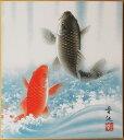 高級色紙「金運大昇鯉」晋伍(色紙絵)送料無料