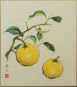 高級色紙「柚子」邦夫(色紙絵)送料無料