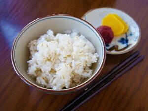 送料無料広島県産コシヒカリの麦ごはん 5kg