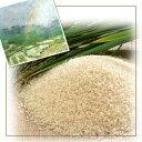 【ポイント10倍】【送料無料】広島県産自然農法で作った米 20kg(5kg×4青袋)棚田米【28年産1等米】