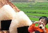 ミルキークイーン10kg送料無料5kg×2袋定期お届け】10回コース広島県産検査済み1等米白米玄米3分精米5分精米7分精米