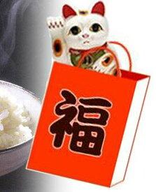 送料無料 福袋 広島県産コシヒカリ等10kgごはんが大好きな方へ♪ 福袋 元年産1等米