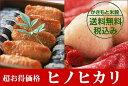 【ポイント10倍】【送料無料】広島県産ヒノヒカリ20kg(5kg×4無地袋) 特A米【28年産1等米】【新米20キロ】棚田の自然農法米ひのひかり
