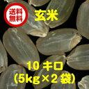 【ポイント10倍】【送料無料】広島県産コシヒカリ 10kg玄米(5kg×2無地袋)【28年産1等米】