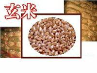 【送料無料】玄米/白米選べます。