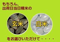 レターパック【全国送料無料】新潟県産コシヒカリ2kg【特A米】【当店最高級/一流品】JA米
