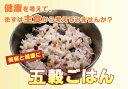【ポイント10倍】雑穀・雑穀米コシヒカリ五穀ごはん150グラム(一合)×5袋 【送料無料】炊飯器で炊くだけ【1】