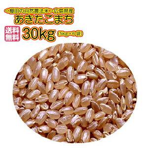 送料無料 広島県産あきたこまち 30kg 玄米 5kg×6赤袋令和元2年産 1等米