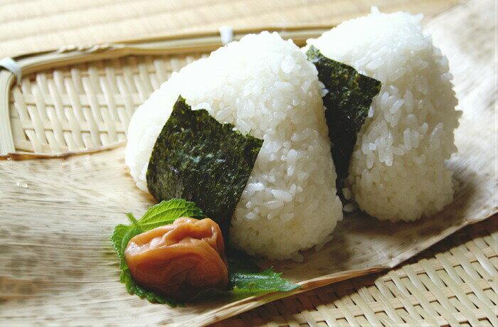 送料無料 魚沼産コシヒカリ 2kgなど、えらべる銘柄米よりどり3袋=6kg