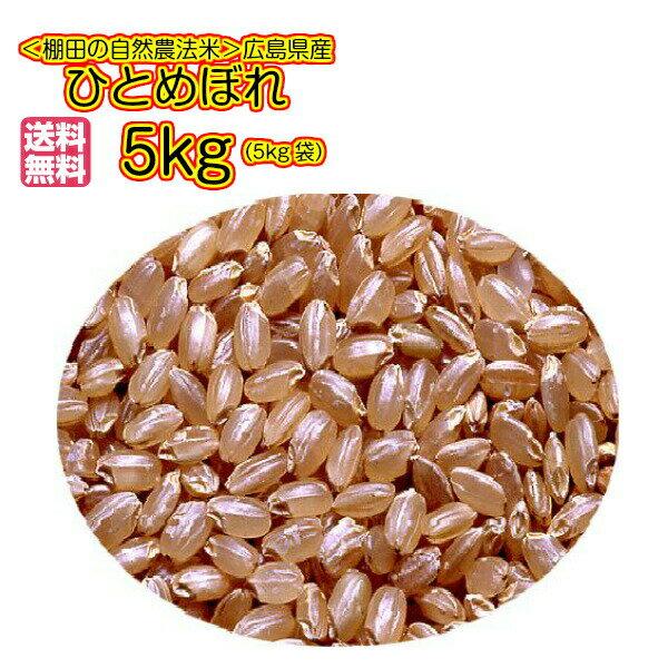 送料無料 広島県産ひとめぼれ 10kg 玄米 5kg×2無地袋 30年産1等米
