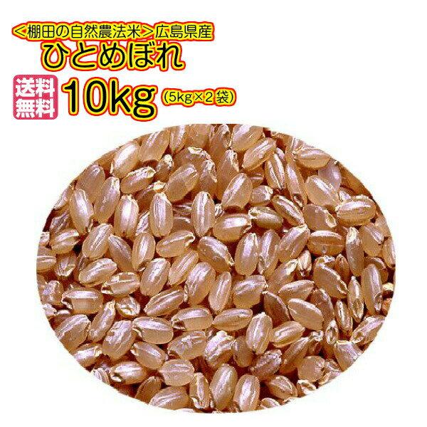 送料無料 広島県産ひとめぼれ 10kg 玄米 5kg×2無地袋30年産1等米