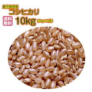 送料無料 鹿児島県産コシヒカリ 10kg 玄米 新米5kg×2赤袋 令和3年産 新米