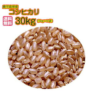 送料無料 鹿児島県産コシヒカリ 30kg 玄米 5kg×6ゴールド袋2年産 新米
