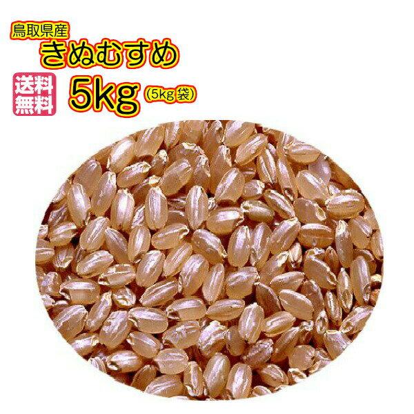 送料無料 鳥取県産きぬむすめ 5kg 玄米 緑袋 特A米30年産1等米