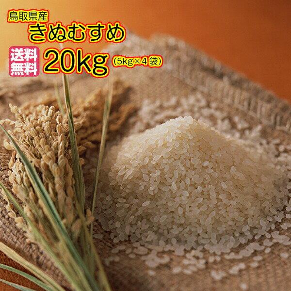 送料無料 鳥取県産きぬむすめ 20kg 5kg×4緑袋 特A米30年産1等米