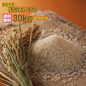 送料無料 鳥取県産きぬむすめ 30kg 玄米 5kg×6緑袋 特A米 令和元年産 1等米