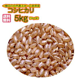 送料無料 広島県産コシヒカリ 5kg 玄米 新米 無地袋 3袋購入で3袋目無料2袋購入で2袋目半額令和2年産 1等米