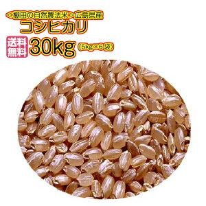 送料無料 広島県産コシヒカリ 30kg 玄米 5kg×6無地袋令和元年産 1等米