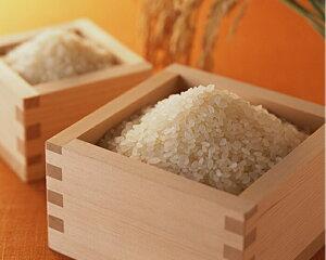 送料無料 広島県産コシヒカリ 10kg 玄米 新米お買い上げで5kgプレゼント15kgお届け当店高級米金の袋令和2年産 1等米