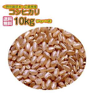 送料無料 特別栽培米 広島県産コシヒカリ 10kg 玄米 5kg×2ゴールド袋令和元年1等米