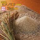 送料無料 もち米 3kg広島県産ヒメノモチ 3kg 新米 緑袋 二升 モチ米 3kg 餅米 3kg