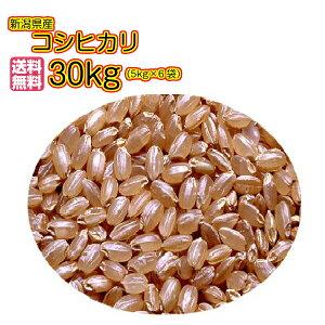送料無料 新潟県産コシヒカリ 30kg 玄米 5kg×6袋当店一流米 令和2年産 1等米