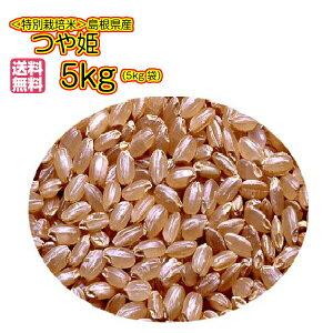 送料無料 島根県産つや姫 5kg 玄米 金の袋 特別栽培米 令和元年産