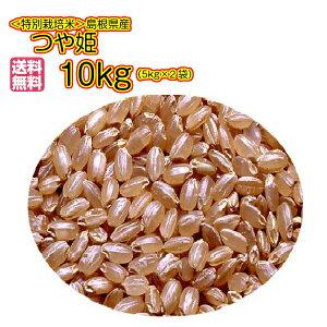 送料無料 島根県産つや姫 10kg 玄米 5kg×2 金の袋 奥出雲 特別栽培米 つや姫 10kg 令和元年産