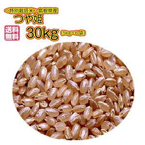 送料無料 島根県産 つや姫 30kg 玄米 5kg×6金袋奥出雲産 特別栽培米令和元年産 1等米