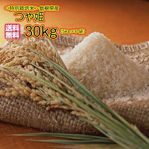 送料無料 島根県産つや姫 30kg 特別栽培米 新米 特A米 5kg×6金袋奥出雲産 30kg令和2年産 1等米