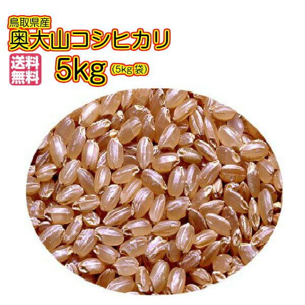 送料無料 鳥取県産奥大山コシヒカリ 5kg 無地袋 玄米 鳥取県産コシヒカリ 5kg 30年産1等米