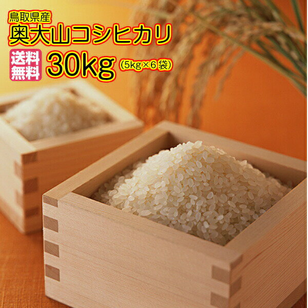 送料無料 鳥取県産奥大山コシヒカリ 30kg 5kg×6金の袋鳥取県産コシヒカリ 30kg 30年産1等米