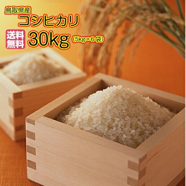送料無料 鳥取県産コシヒカリ 30kg 5kg×6 無地袋30年産1等米