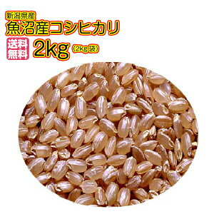 送料無料 魚沼産コシヒカリ 2kg 玄米 特A米新潟県産コシヒカリ令和2年産 1等米