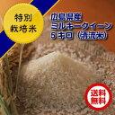 【ポイント10倍】【送料無料】【特別栽培米】広島県産ミルキークイーン5kg(金色袋)棚田の自然農法米 ミルキークイー…