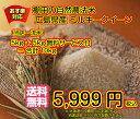 【ポイント20倍】【送料無料】広島県産ミルキークイーン 5kg玄米(10kgお届け)【当店最高級/一流品ゴールド袋】お買上で5kg増量プレゼント付【3】
