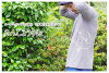 7-organic cotton t-shirt sleeves (three-quarter): semiaquatic salamanders