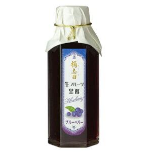 ピュアミノ 生フルーツ黒酢 ブルーベリー 100ml