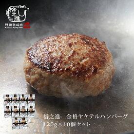 ハンバーグ 温めるだけ 湯煎 冷凍 送料無料 格之進 ヤケテル金格ハンバーグ (約120g×10個セット) 国産牛 白金豚