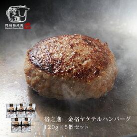 ハンバーグ 温めるだけ 湯煎 冷凍 送料無料 格之進 ヤケテル金格ハンバーグ (約120g×5個セット) 国産牛 白金豚