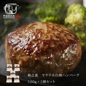 ハンバーグ 温めるだけ レトルト 冷凍 送料無料 格之進 ヤケテル白格ハンバーグ (約120g×5個セット) 黒毛和牛 白金豚 無添加