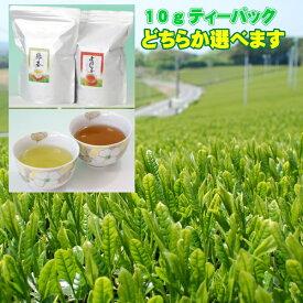 たっぷり10gティーバッグ 【緑茶】【ほうじ茶】 どちらか選べます! どちらも選べます!ティーバッグ 10gx70個(35x2袋セット) 使いやすいチャック袋 送料無料 お茶 業務用 緑茶 ティーパック