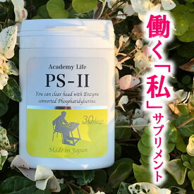 【ポイント10倍】PS-II 国産 PS 115mg イチョウ葉 80mg ホスファチジルセリン DHA EPA レシチン オメガ3 サプリ ストレス 子供 勉強 30日分