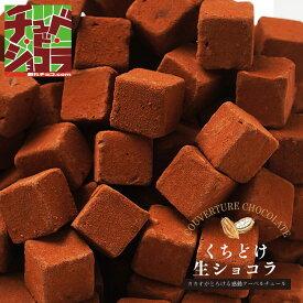 くちどけ生ショコラ 生チョコレートをどっさり500gの大容量! 東京 自由が丘のチュベドショコラの割れチョコが生チョコに! クーベルチュール チョコレート  自分チョコ
