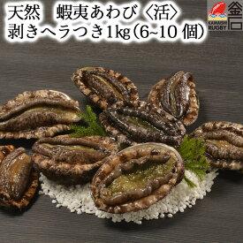 【送料無料】天然 蝦夷あわび〈活〉 1kg (6~10 個) 剥きヘラつき ヤマキイチ商店
